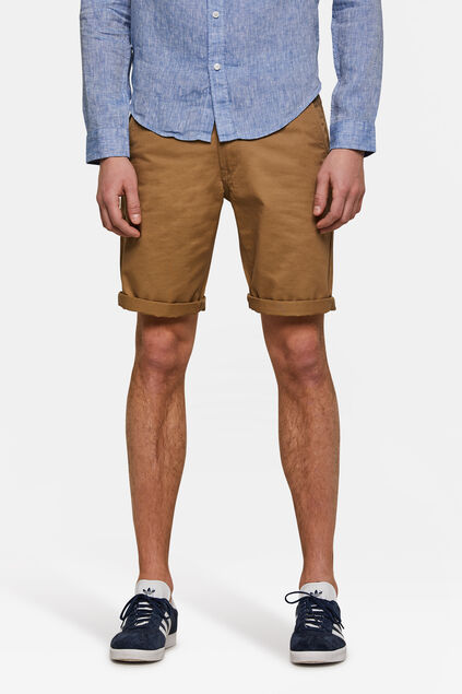 Herren-Regular-Fit-Chinoshorts Zimtbraun