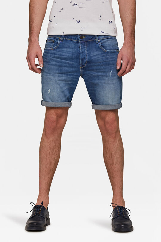 Herren-Regular-Fit-Shorts Hellblau