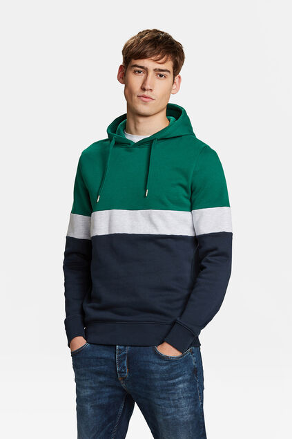 HERREN-SWEATSHIRT IN COLOURBLOCK-OPTIK Grün