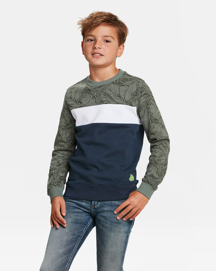 JUNGEN-SWEATSHIRT IN COLORBLOCK-OPTIK Armeegrün